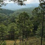 Central Cardamom Mountains National Park Cambodia, Asia