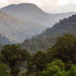 Gunung Leuser National Park Indonesia, Asia