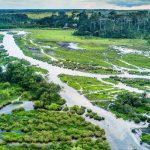 Odzala-Kokoua National Park Republic of Congo, Africa